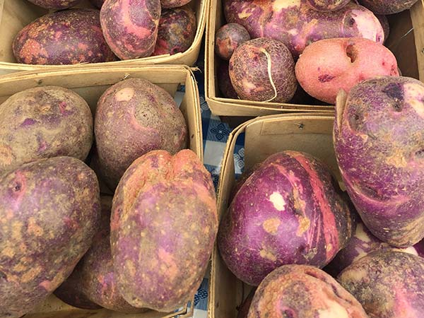 Purple Potatoes