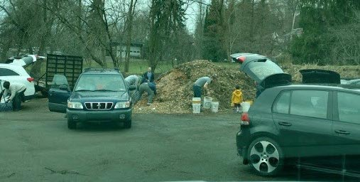 Xmas Tree Recycling Location