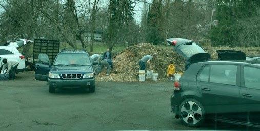 Xmas Tree Recycling Location